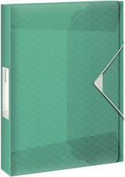 Documentenbox Esselte Colour'Ice 40mm groen